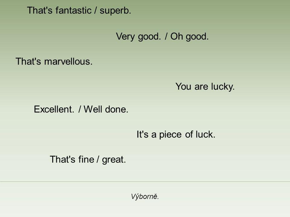 That s fantastic / superb. Výborně. Very good. / Oh good.
