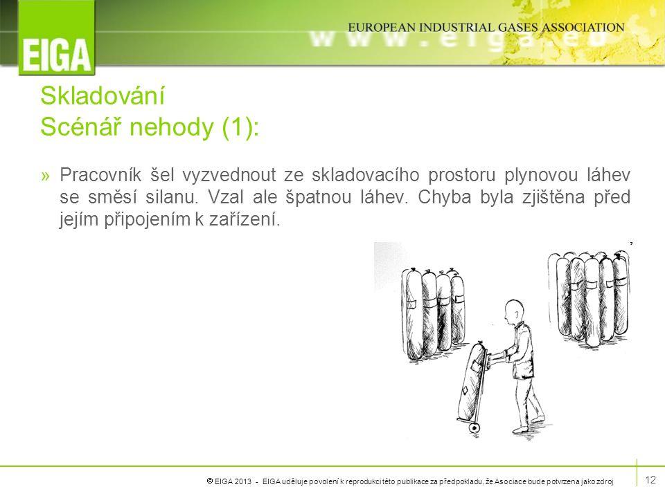  EIGA 2013 - EIGA uděluje povolení k reprodukci této publikace za předpokladu, že Asociace bude potvrzena jako zdroj Skladování Scénář nehody (1): »P