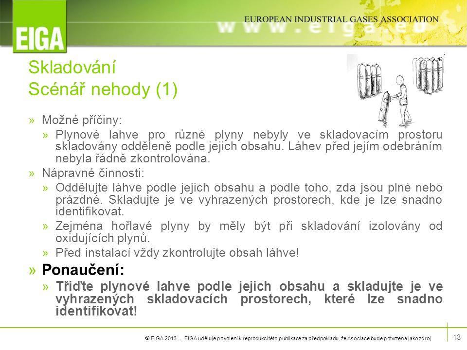  EIGA 2013 - EIGA uděluje povolení k reprodukci této publikace za předpokladu, že Asociace bude potvrzena jako zdroj Skladování Scénář nehody (1) »Mo