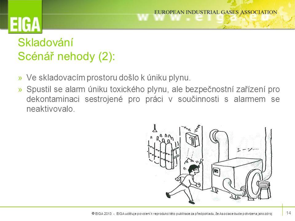  EIGA 2013 - EIGA uděluje povolení k reprodukci této publikace za předpokladu, že Asociace bude potvrzena jako zdroj Skladování Scénář nehody (2): »V