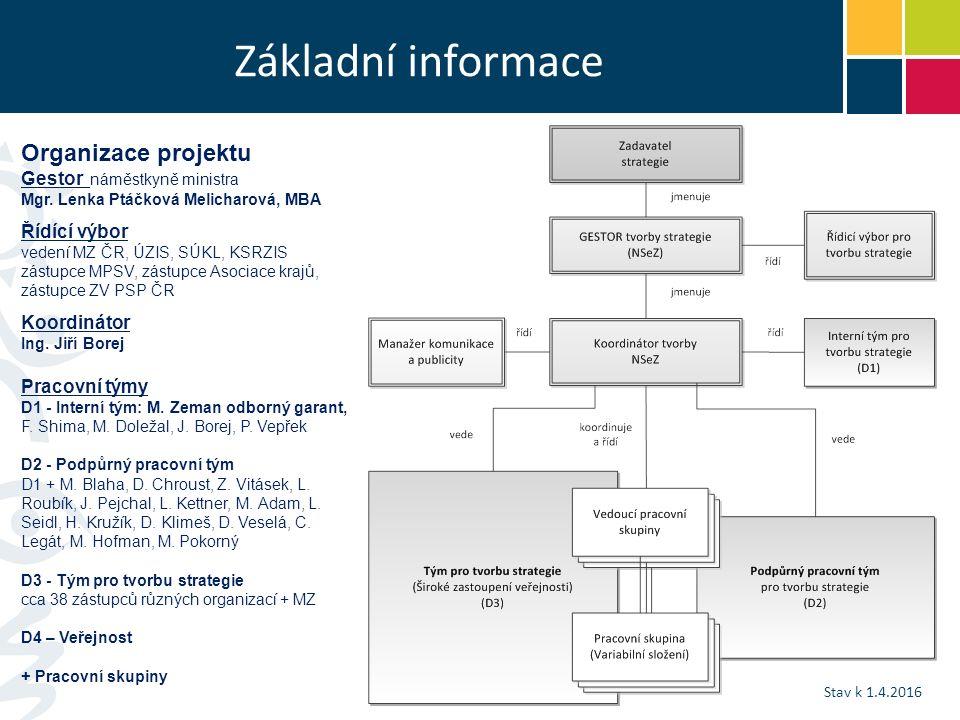 Základní informace Organizace projektu Gestor náměstkyně ministra Mgr.