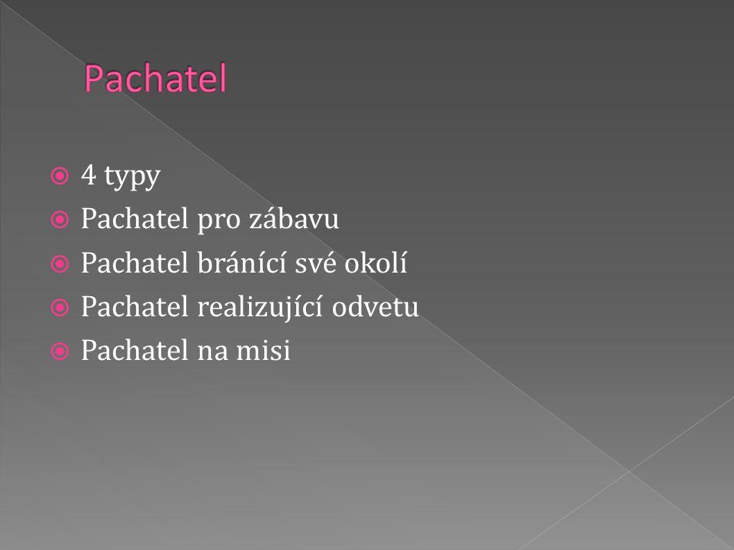 4 typy  Pachatel pro zábavu  Pachatel bránící své okolí  Pachatel realizující odvetu  Pachatel na misi