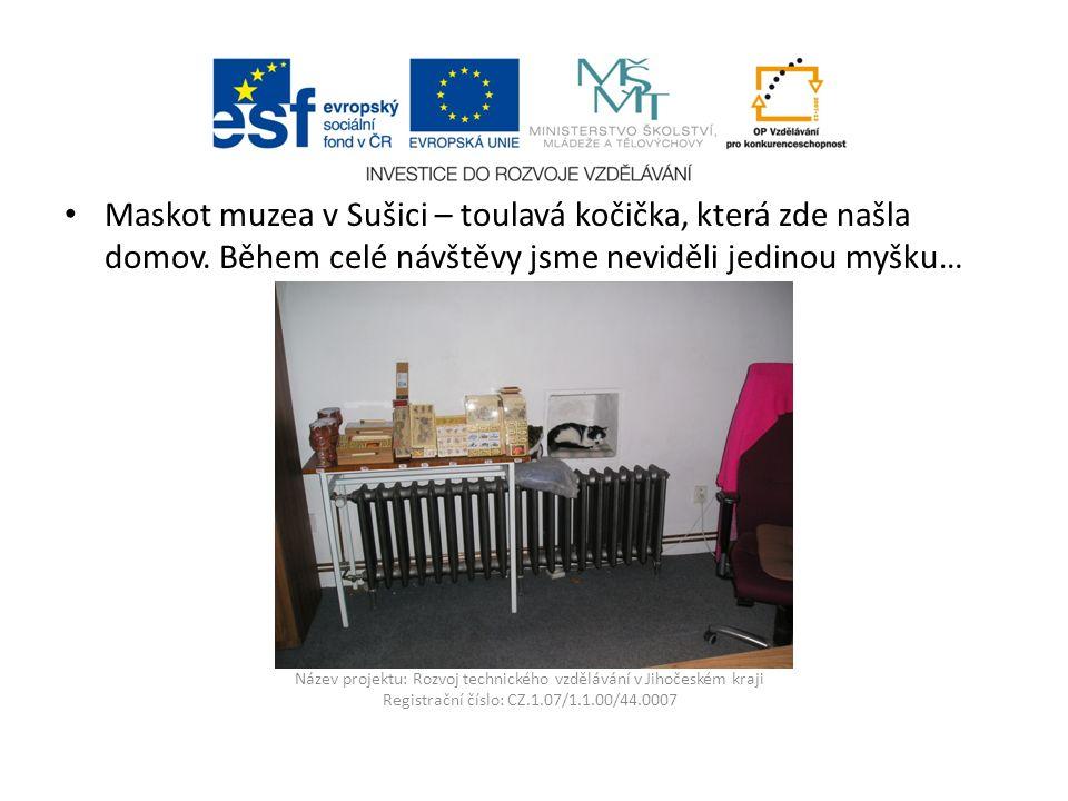 Název projektu: Rozvoj technického vzdělávání v Jihočeském kraji Registrační číslo: CZ.1.07/1.1.00/44.0007 Maskot muzea v Sušici – toulavá kočička, která zde našla domov.