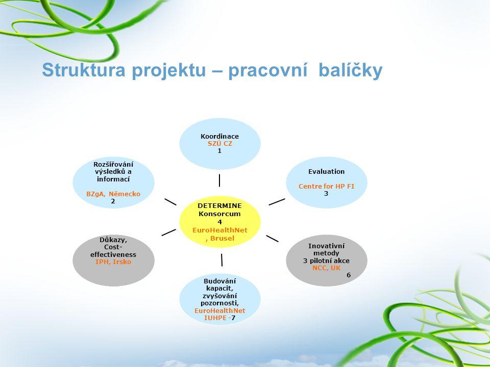 Struktura projektu – pracovní balíčky