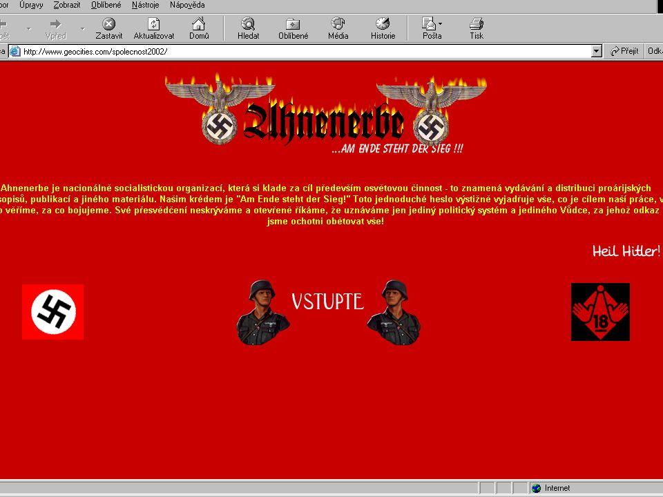 Kombinace symboliky Combat 18 a Blood & Honour (šifra 28), koncept odporu bez vůdce.