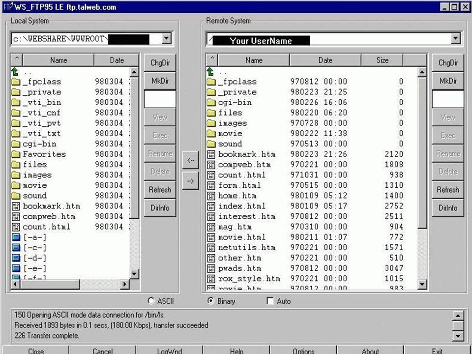 FTP (File Transfer Protocol) Protokol FTP vám dovolí vyhledávat a přenášet soubory z něj či na něj. Na Vašem počítači běží program FTP klient a na hos
