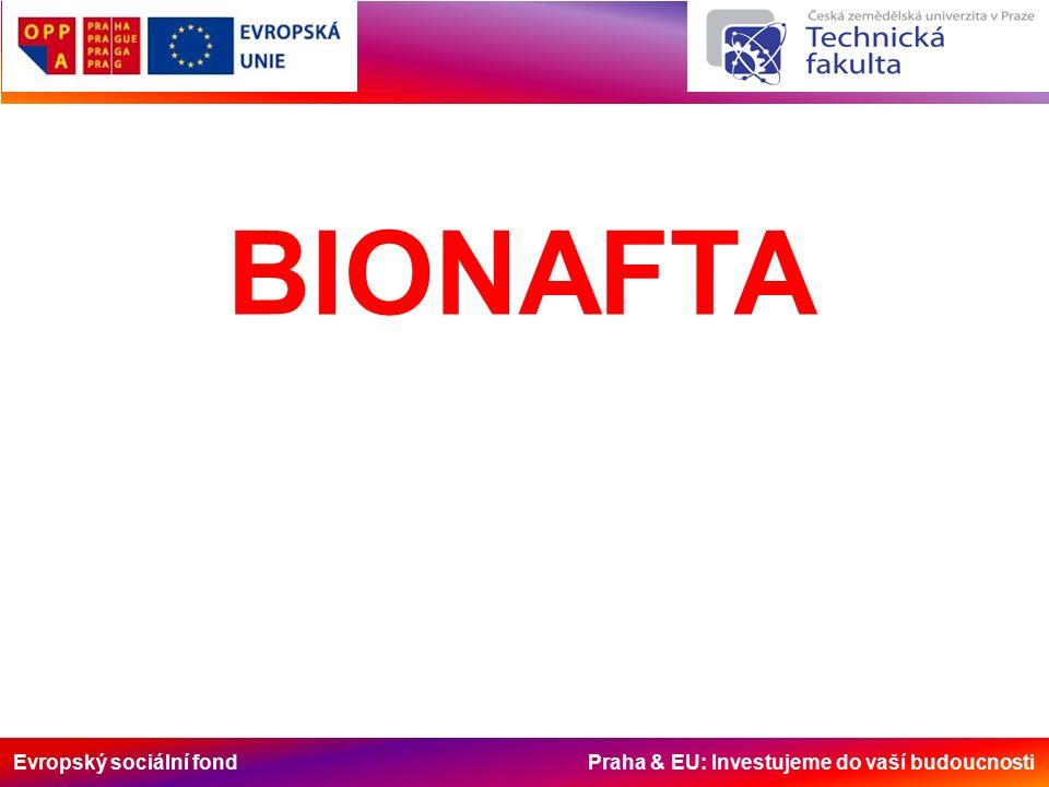 Evropský sociální fond Praha & EU: Investujeme do vaší budoucnosti BIONAFTA