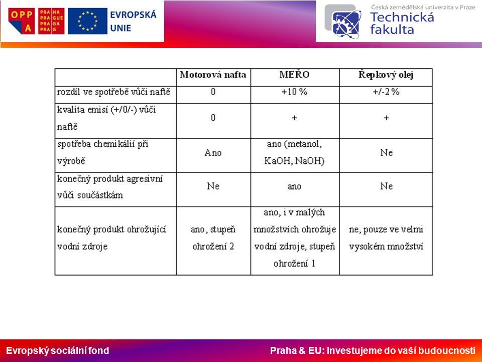 Evropský sociální fond Praha & EU: Investujeme do vaší budoucnosti