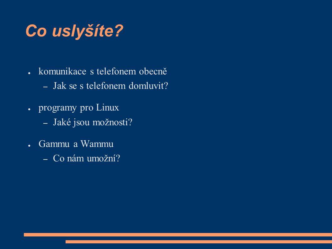 Co uslyšíte. ● komunikace s telefonem obecně – Jak se s telefonem domluvit.