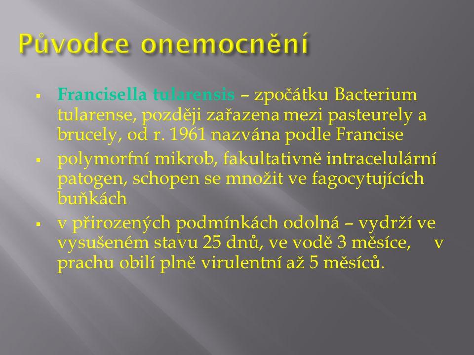  Francisella tularensis – zpočátku Bacterium tularense, později zařazena mezi pasteurely a brucely, od r.