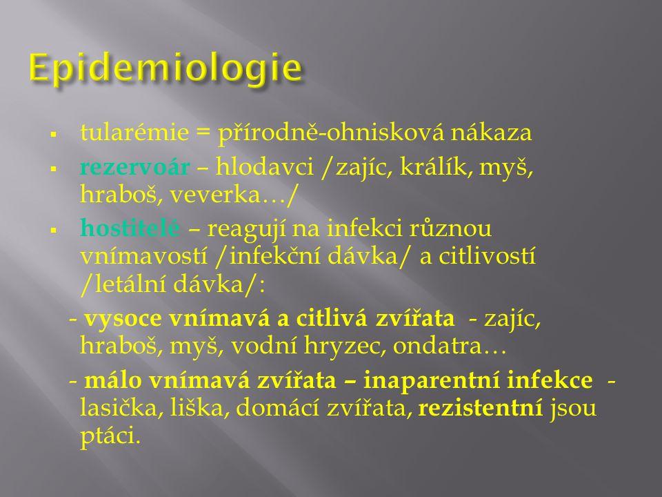  tularémie = přírodně-ohnisková nákaza  rezervoár – hlodavci /zajíc, králík, myš, hraboš, veverka…/  hostitelé – reagují na infekci různou vnímavostí /infekční dávka/ a citlivostí /letální dávka/: - vysoce vnímavá a citlivá zvířata - zajíc, hraboš, myš, vodní hryzec, ondatra… - málo vnímavá zvířata – inaparentní infekce - lasička, liška, domácí zvířata, rezistentní jsou ptáci.