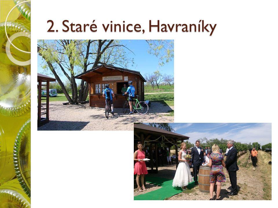 2. Staré vinice, Havraníky