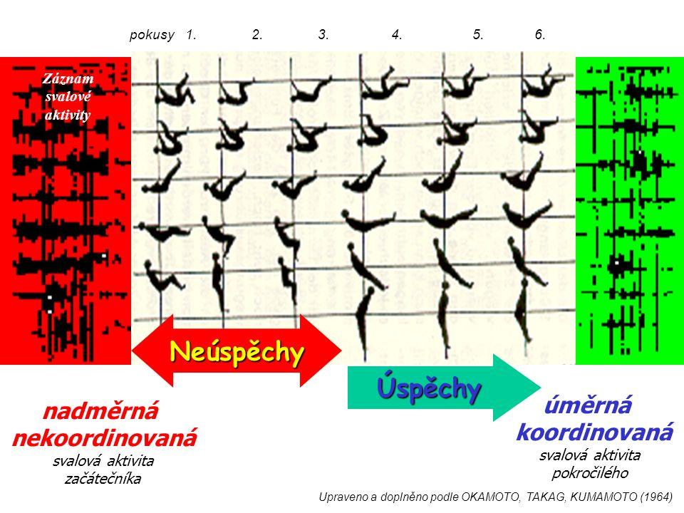 Upraveno a doplněno podle OKAMOTO, TAKAG, KUMAMOTO (1964) nadměrná nekoordinovaná svalová aktivita začátečníka úměrná koordinovaná svalová aktivita pokročilého pokusy 1.