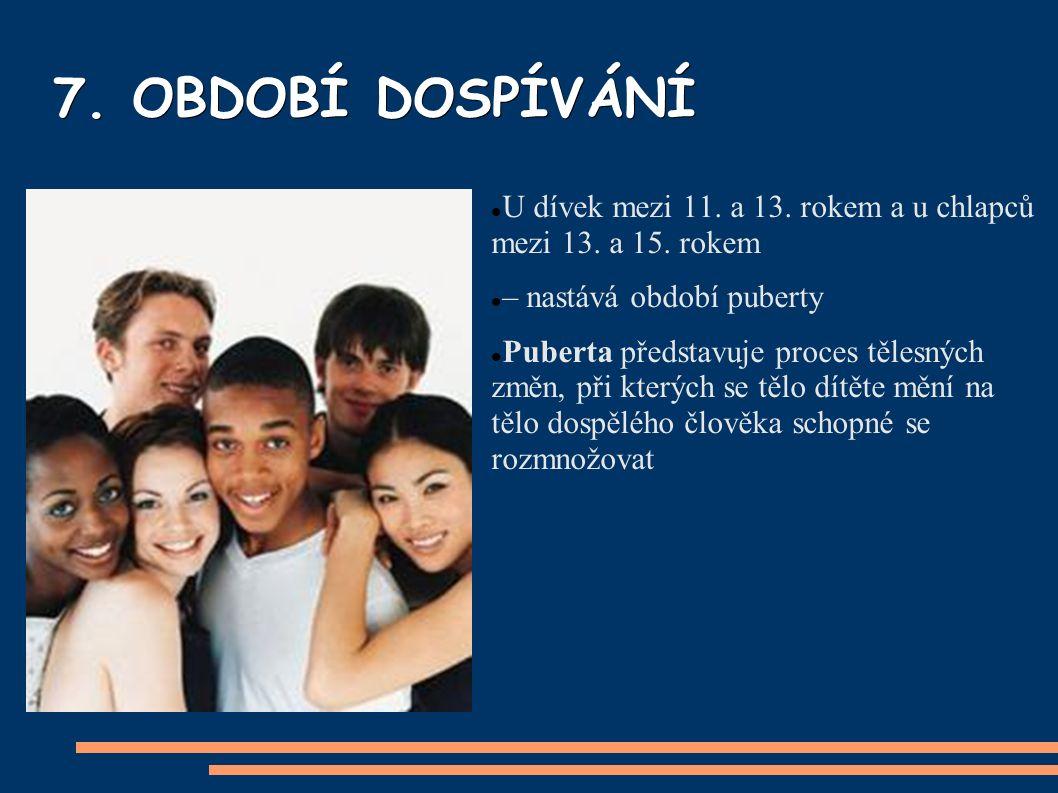 7. OBDOBÍ DOSPÍVÁNÍ U dívek mezi 11. a 13. rokem a u chlapců mezi 13.