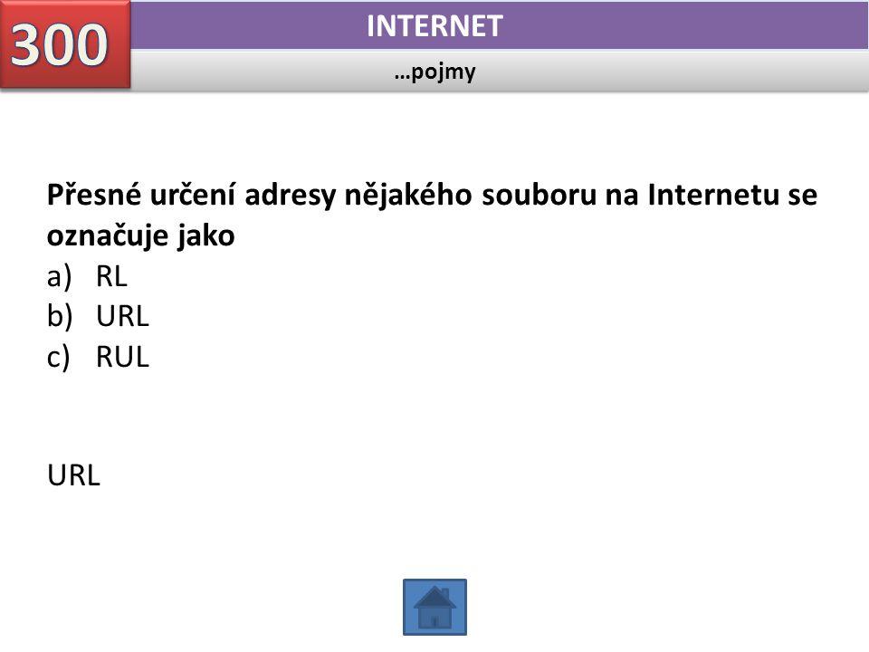 …pojmy INTERNET Přesné určení adresy nějakého souboru na Internetu se označuje jako a)RL b)URL c)RUL URL