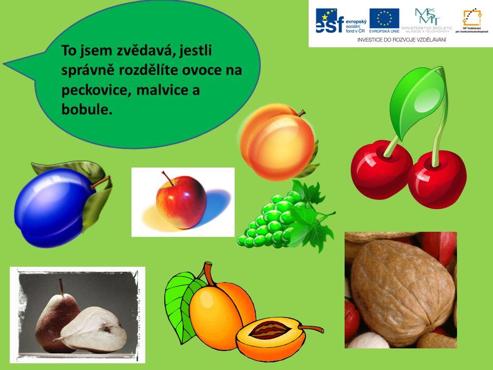 To jsem zvědavá, jestli správně rozdělíte ovoce na peckovice, malvice a bobule.