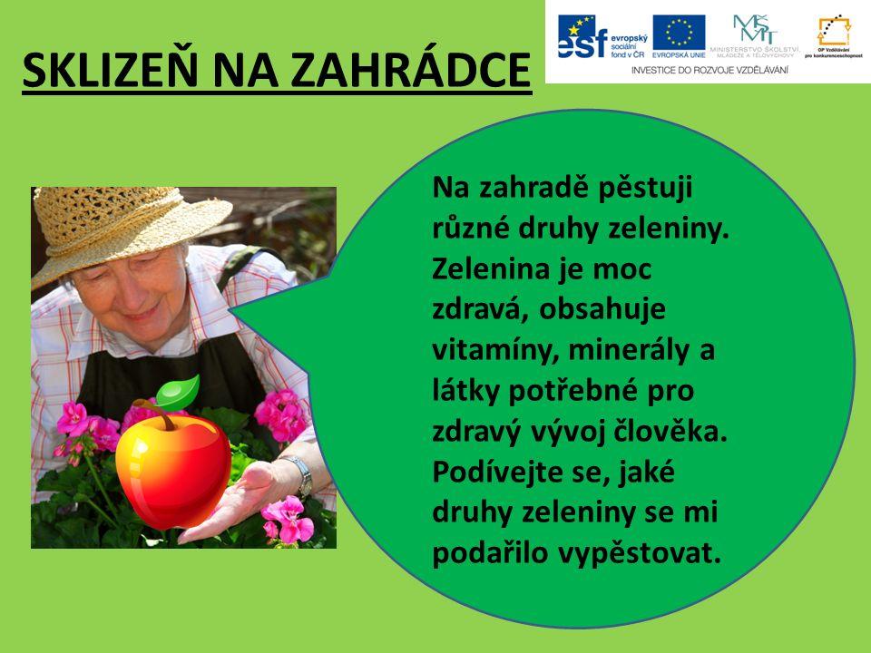 SKLIZEŇ NA ZAHRÁDCE Na zahradě pěstuji různé druhy zeleniny.