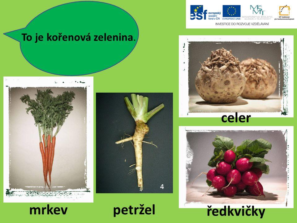 To je kořenová zelenina. 4 mrkevpetržel ředkvičky celer