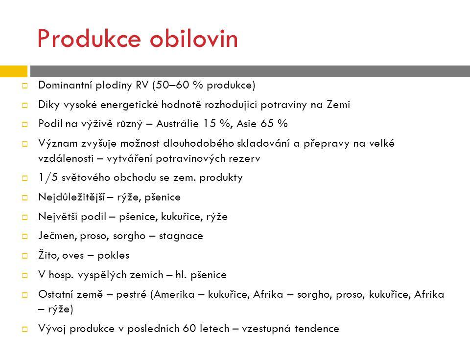 Budoucí vývoj  V posledních letech růst poptávky po zemědělských produktech  =>Výroba potravin, krmiv, ale nově pro energetické účely  => růst cen => vyšší ceny potravin (v některých zemích politický problém) – v ČR .