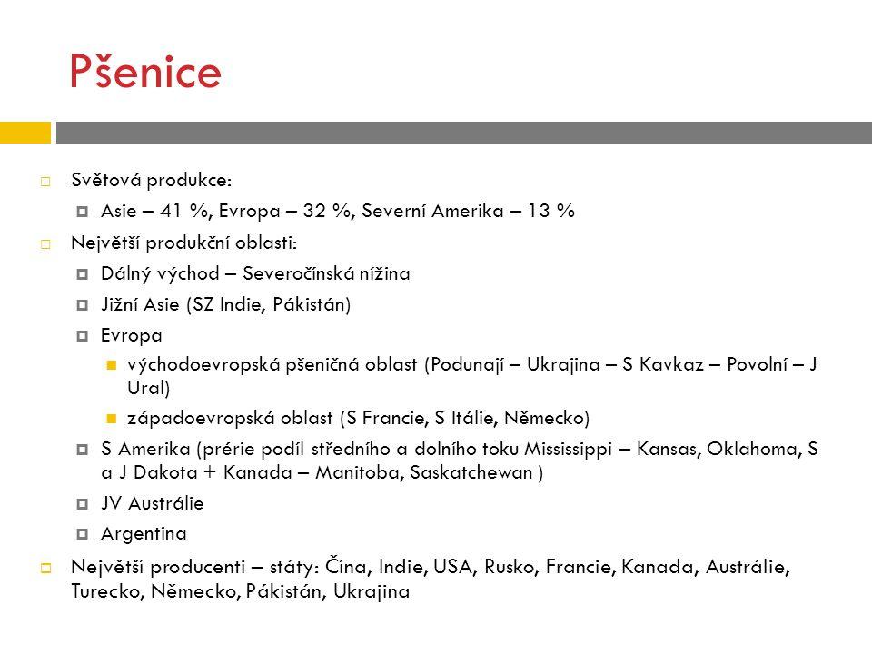 Pšenice  Světová produkce:  Asie – 41 %, Evropa – 32 %, Severní Amerika – 13 %  Největší produkční oblasti:  Dálný východ – Severočínská nížina 