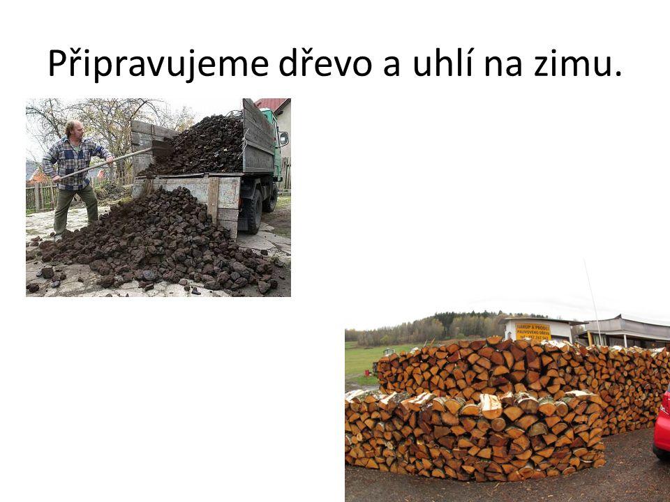 Připravujeme dřevo a uhlí na zimu.