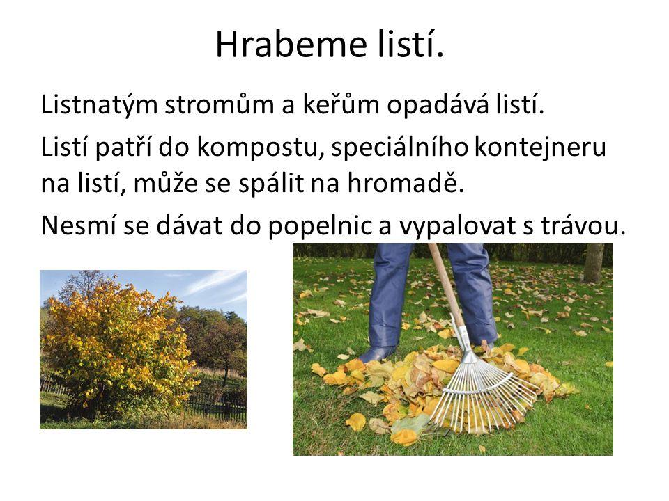 Hrabeme listí. Listnatým stromům a keřům opadává listí. Listí patří do kompostu, speciálního kontejneru na listí, může se spálit na hromadě. Nesmí se