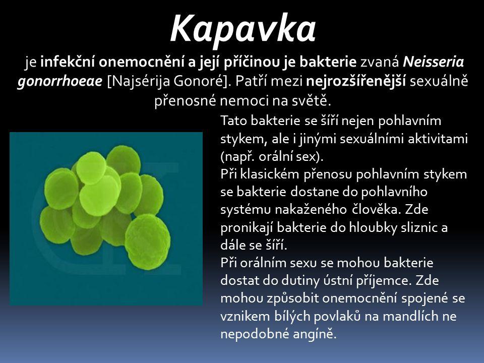 Kapavka je infekční onemocnění a její příčinou je bakterie zvaná Neisseria gonorrhoeae [Najsérija Gonoré]. Patří mezi nejrozšířenější sexuálně přenosn