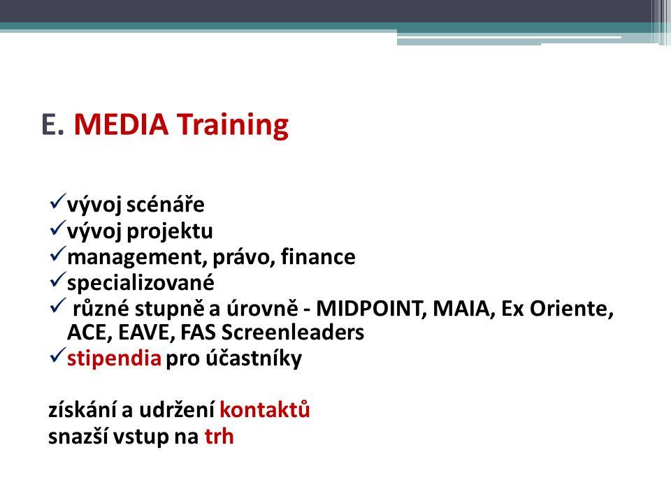 E. MEDIA Training vývoj scénáře vývoj projektu management, právo, finance specializované různé stupně a úrovně - MIDPOINT, MAIA, Ex Oriente, ACE, EAVE