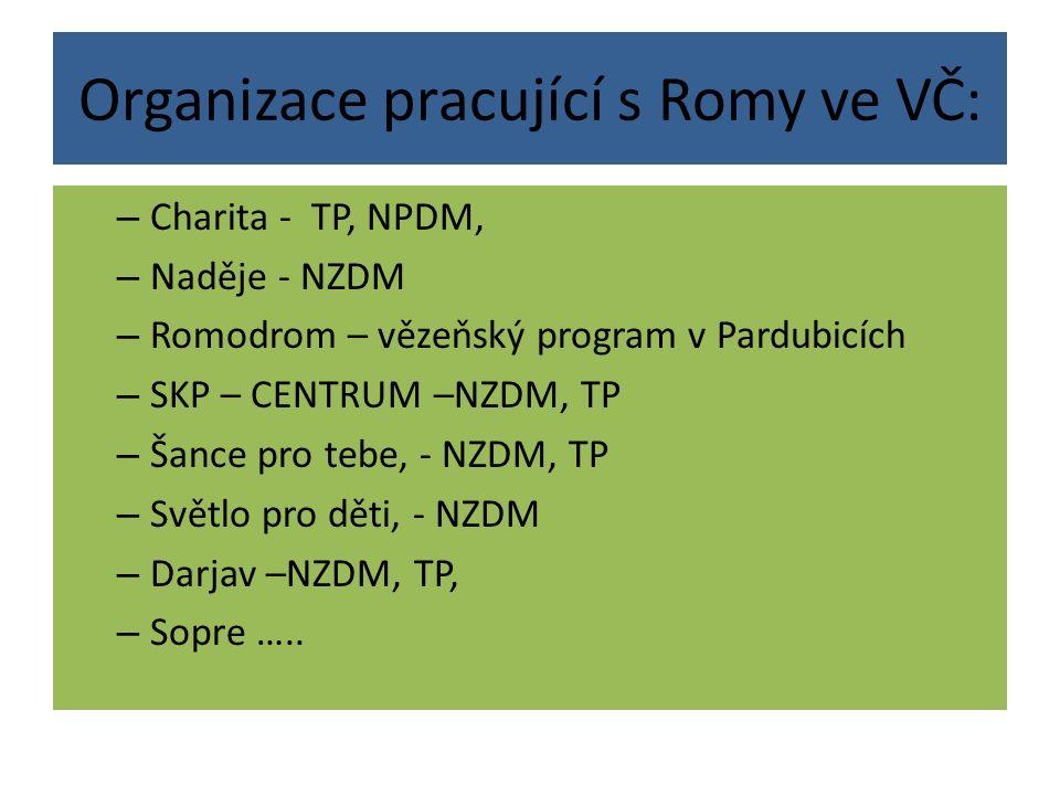 Organizace pracující s Romy ve VČ: – Charita - TP, NPDM, – Naděje - NZDM – Romodrom – vězeňský program v Pardubicích – SKP – CENTRUM –NZDM, TP – Šance