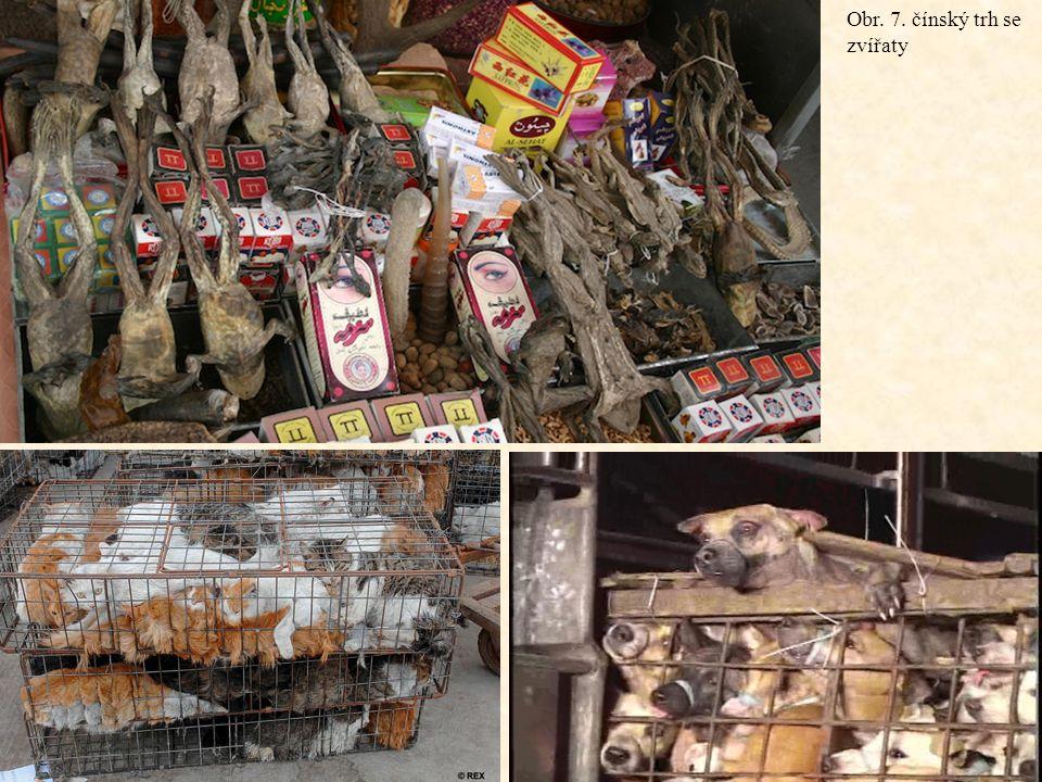 Obr. 7. čínský trh se zvířaty