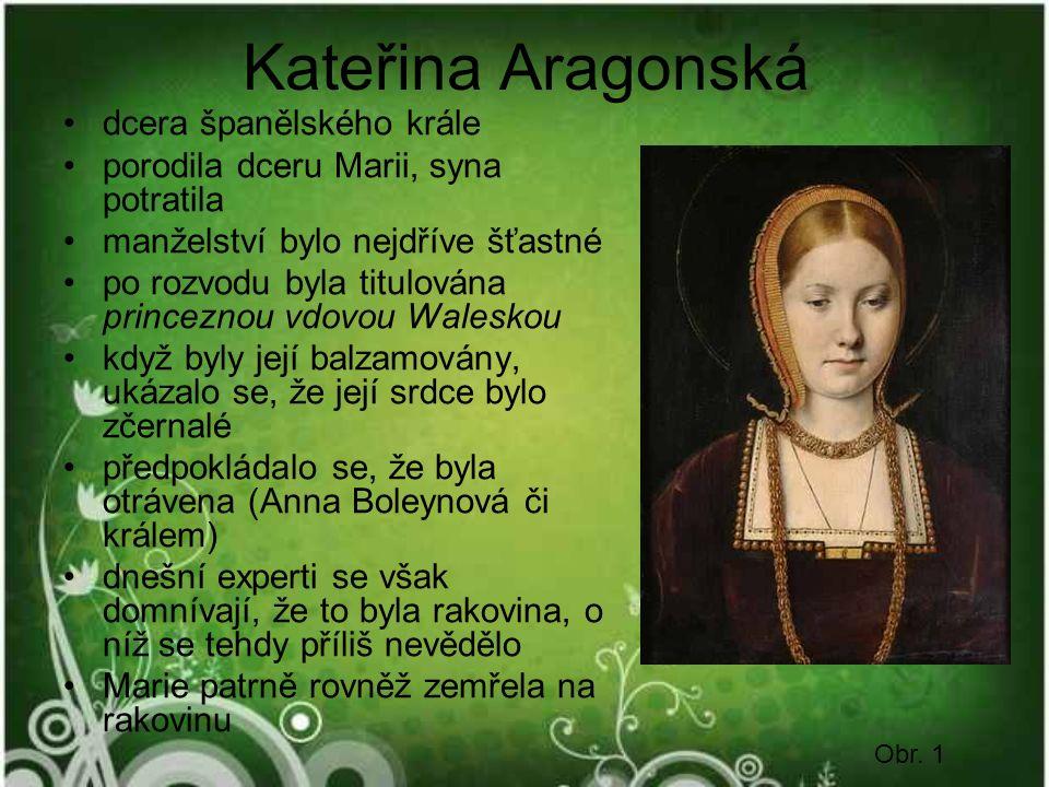 Kateřina Aragonská dcera španělského krále porodila dceru Marii, syna potratila manželství bylo nejdříve šťastné po rozvodu byla titulována princeznou vdovou Waleskou když byly její balzamovány, ukázalo se, že její srdce bylo zčernalé předpokládalo se, že byla otrávena (Anna Boleynová či králem) dnešní experti se však domnívají, že to byla rakovina, o níž se tehdy příliš nevědělo Marie patrně rovněž zemřela na rakovinu Obr.