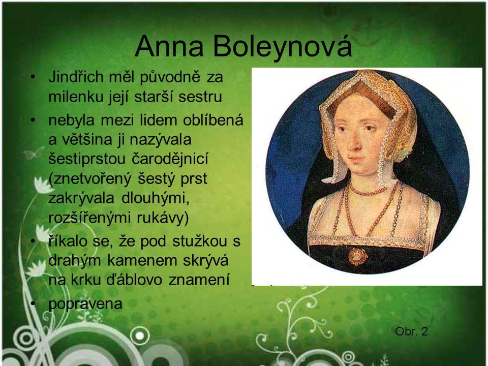 Anna Boleynová Jindřich měl původně za milenku její starší sestru nebyla mezi lidem oblíbená a většina ji nazývala šestiprstou čarodějnicí (znetvořený