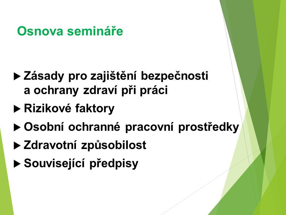 Osnova semináře  Zásady pro zajištění bezpečnosti a ochrany zdraví při práci  Rizikové faktory  Osobní ochranné pracovní prostředky  Zdravotní způsobilost  Související předpisy