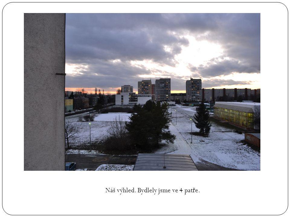Náš výhled. Bydlely jsme ve 4 pat ř e.