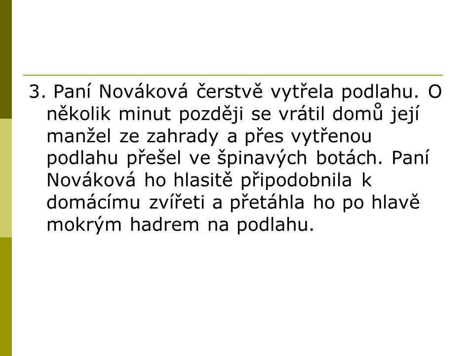 3. Paní Nováková čerstvě vytřela podlahu.