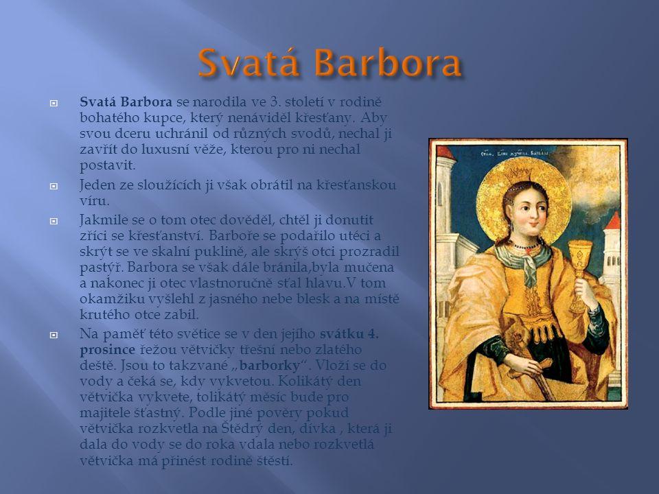  Svatá Barbora se narodila ve 3. století v rodině bohatého kupce, který nenáviděl křesťany.