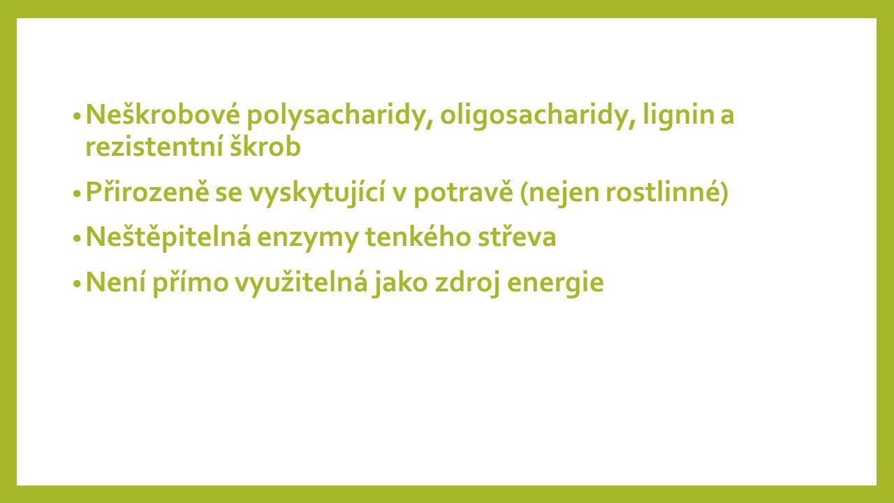 Neškrobové polysacharidy, oligosacharidy, lignin a rezistentní škrob Přirozeně se vyskytující v potravě (nejen rostlinné) Neštěpitelná enzymy tenkého střeva Není přímo využitelná jako zdroj energie
