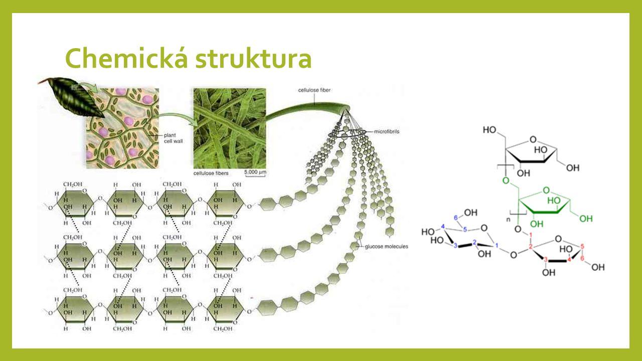Chemická struktura