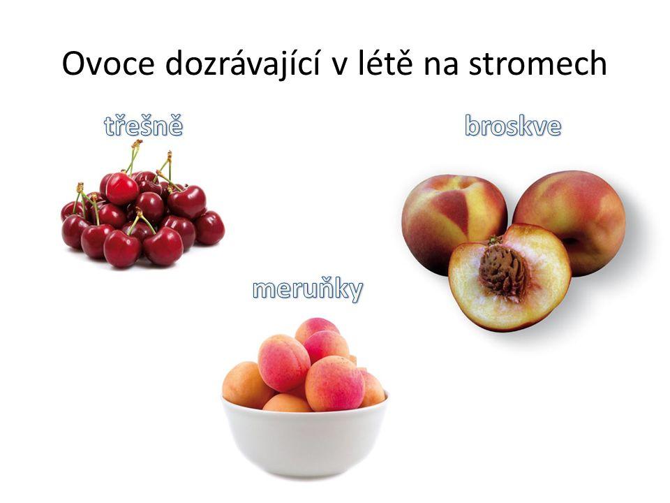 Ovoce dozrávající v létě na stromech