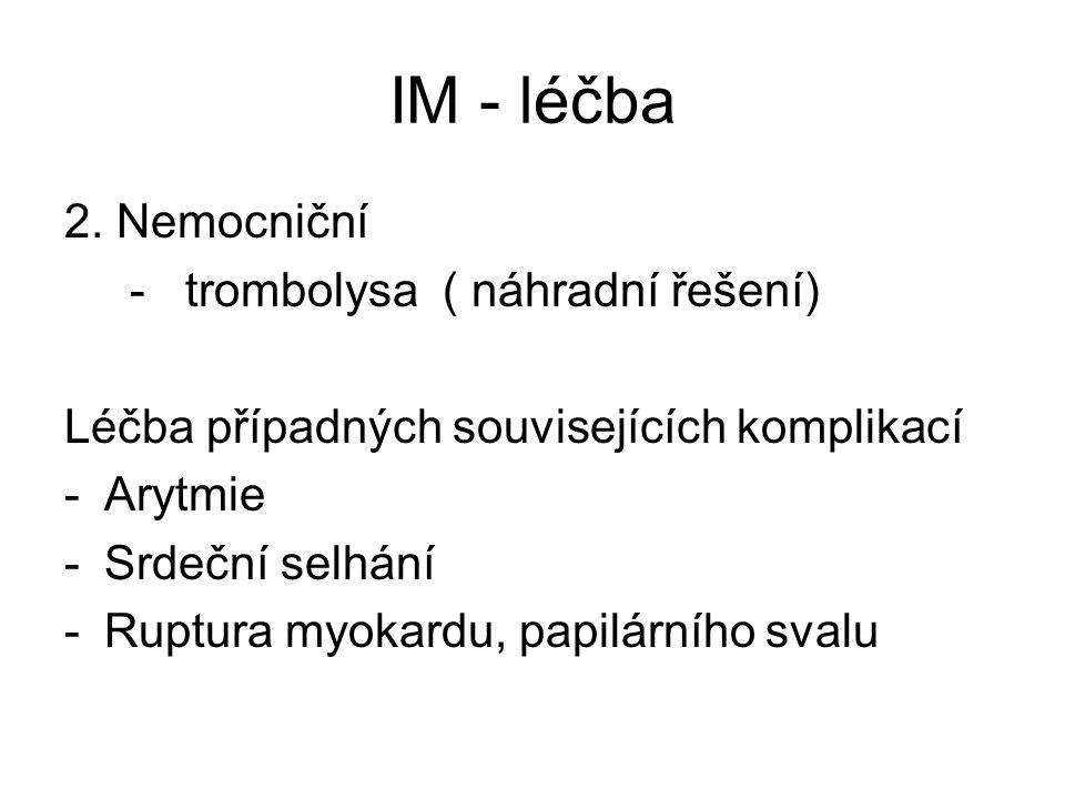 IM - léčba 2.