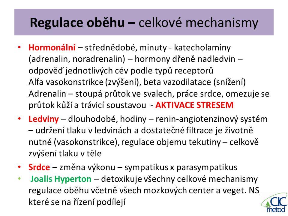 Regulace oběhu – celkové mechanismy Hormonální – střednědobé, minuty - katecholaminy (adrenalin, noradrenalin) – hormony dřeně nadledvin – odpověď jed