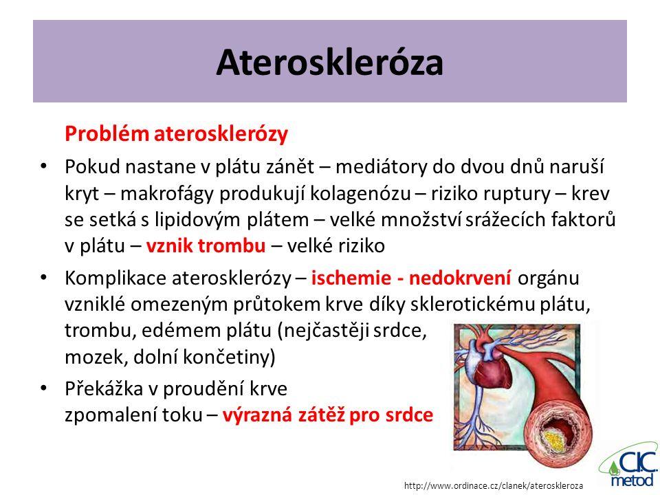 Ateroskleróza Problém aterosklerózy Pokud nastane v plátu zánět – mediátory do dvou dnů naruší kryt – makrofágy produkují kolagenózu – riziko ruptury