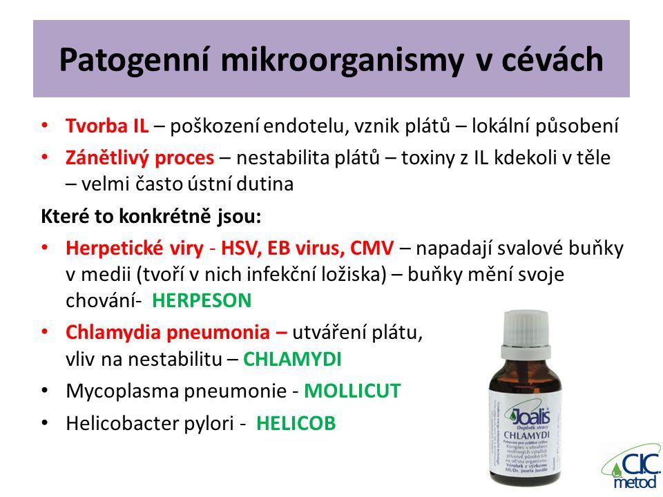 Patogenní mikroorganismy v cévách Tvorba IL – poškození endotelu, vznik plátů – lokální působení Zánětlivý proces – nestabilita plátů – toxiny z IL kd