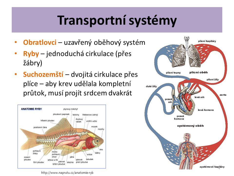 Transportní systémy Obratlovci – uzavřený oběhový systém Ryby – jednoduchá cirkulace (přes žábry) Suchozemští – dvojitá cirkulace přes plíce – aby kre