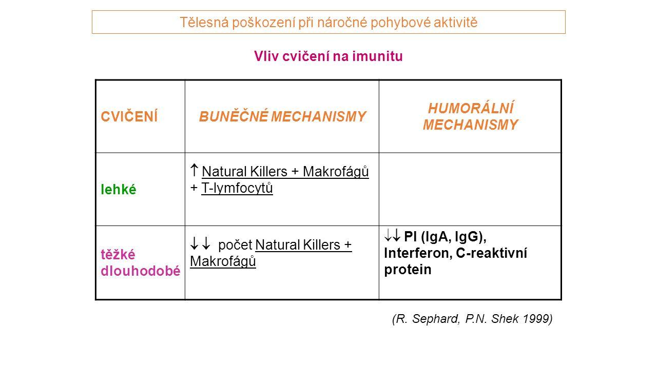 Vliv cvičení na imunitu CVIČENÍBUNĚČNÉ MECHANISMY HUMORÁLNÍ MECHANISMY lehké  Natural Killers + Makrofágů + T-lymfocytů těžké dlouhodobé   počet Natural Killers + Makrofágů  Pl (IgA, IgG), Interferon, C-reaktivní protein (R.