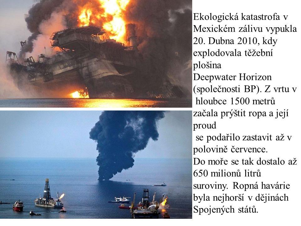 Ekologická katastrofa v Mexickém zálivu vypukla 20. Dubna 2010, kdy explodovala těžební plošina Deepwater Horizon (společnosti BP). Z vrtu v hloubce 1