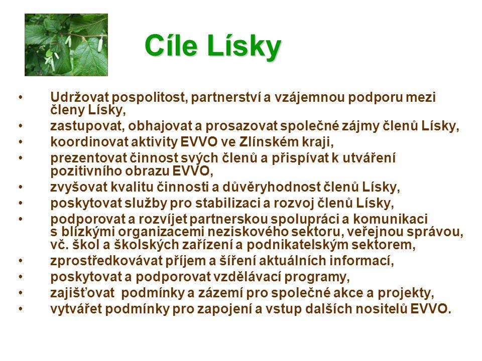 Projektové záměry Lísky na r.2009-10 Informační systém Lísky – podáno na MŽP, Město Vsetín.
