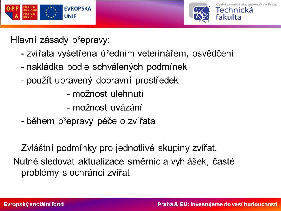 Evropský sociální fond Praha & EU: Investujeme do vaší budoucnosti Hlavní zásady přepravy: - zvířata vyšetřena úředním veterinářem, osvědčení - naklád