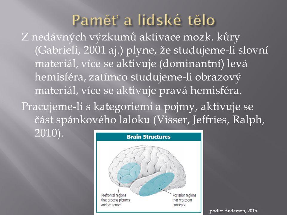 Z nedávných výzkumů aktivace mozk.