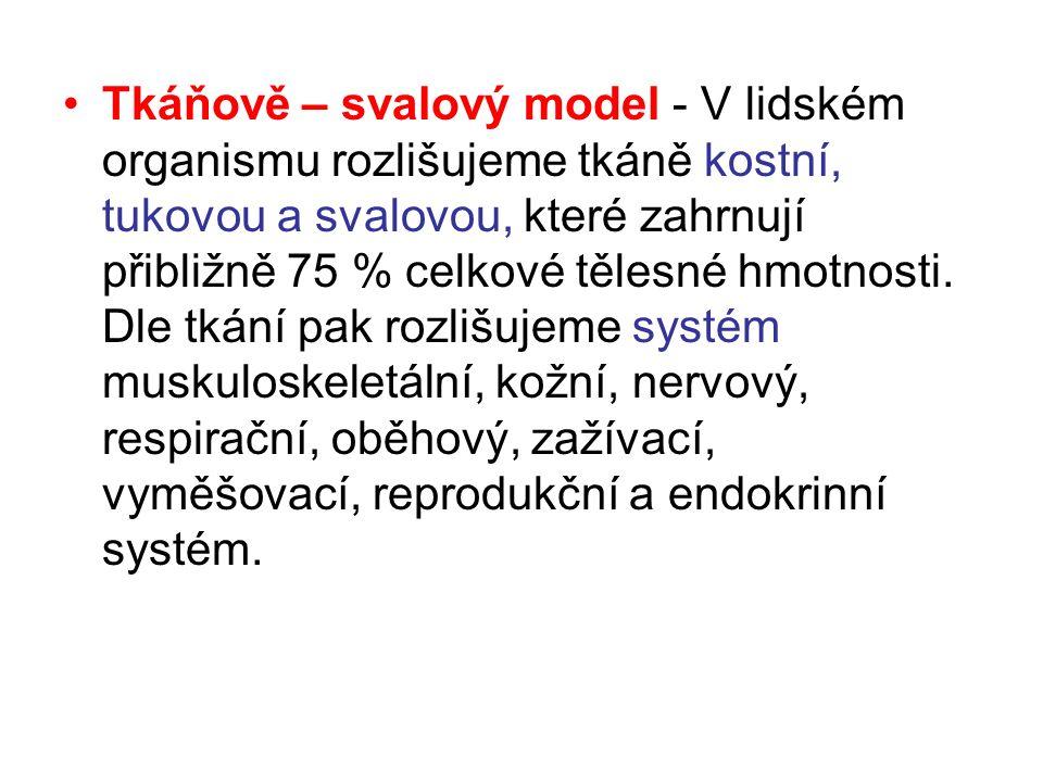 http://www.eamos.cz/amos/kat_tv/externi/ antropomotorik/morfologicka_stavba/stran ky/tel_slozeni.htmhttp://www.eamos.cz/amos/kat_tv/externi/ antropomotorik/morfologicka_stavba/stran ky/tel_slozeni.htm